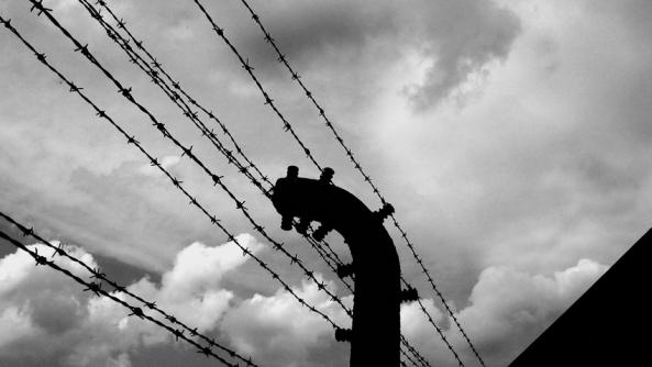 Esclavos inconsciencia voluntarios esclavitud libertad autoestima psicologia auschwitz auswitch verja alambre espino electrificado valla prisioneros prision cracovia polonia judios