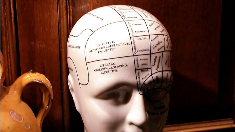 Mente cerebro identificacion personalizacion consciencia despertar pensamientos ego autoestima craneo cabeza dibujo maniqui medico doctor neurologia neuronas cerebro