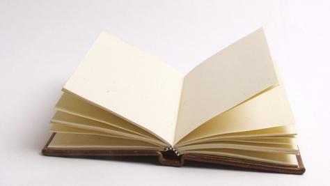 Leer comprender lectura comprensiva aprehender leido libro educacion colegio padres adolescentes atencion TDAH PNL psicologia consejos paginas blanco libertad