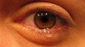 Aprender inteligencia emocional control emociones gestion salud psicologia terapia lenguaje lagrima ojo llorar reir negatividad positividad positivo negativo pensamientos traumas miedos relaciones